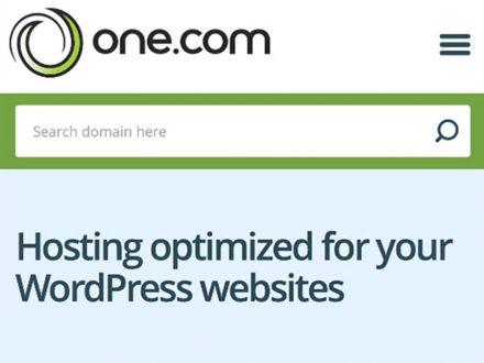 One.Com 1 Year WordPress Hosting (Business Plan)
