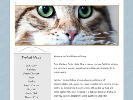 Cats Whiskers Site Design